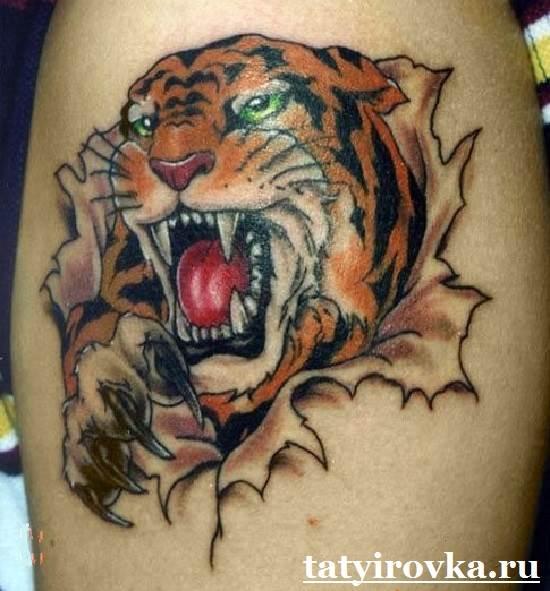 Тату-тигр-и-их-значение-11