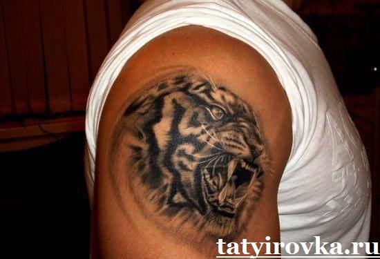 Тату-тигр-и-их-значение-17