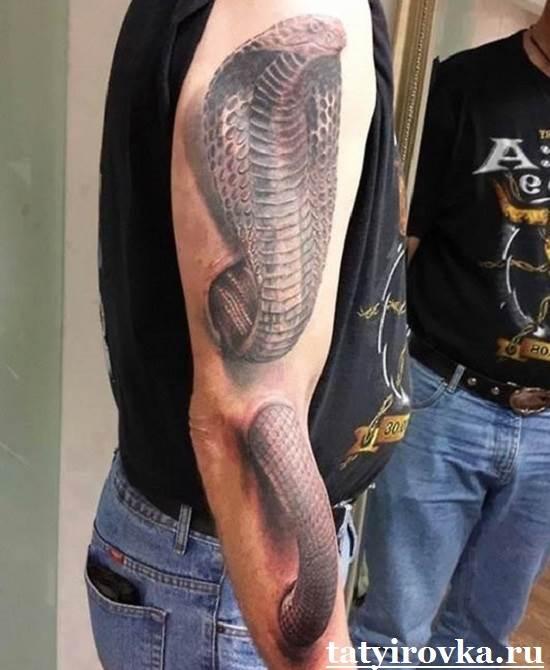 Тату-кобра-и-её-значение-12