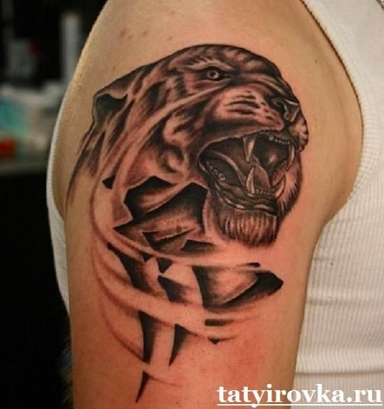 Тату-тигр-и-их-значение-8