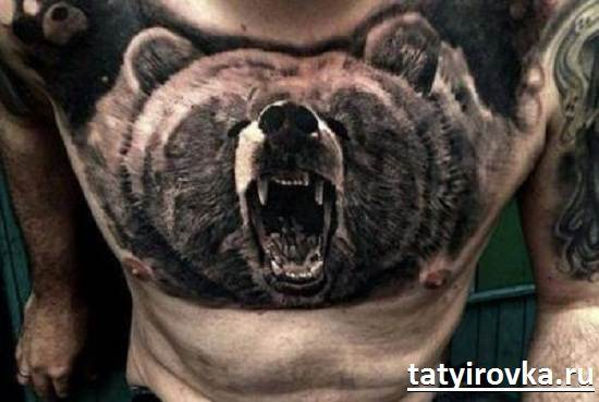 Тату-медведь-и-их-значение-1