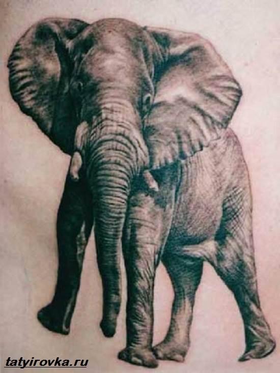 Тату-слон-и-их-значение-3